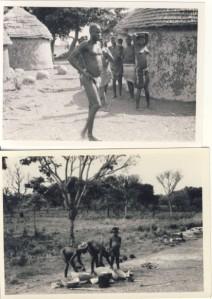 British Togoland Plebiscite 15