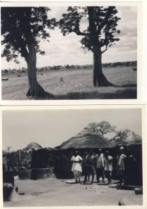 British Togoland Plebiscite 21