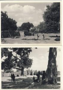 British Togoland Plebiscite 25