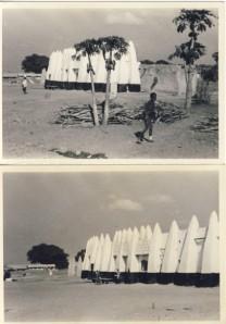 British Togoland Plebiscite 29