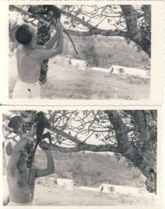 Vlado with monkey Ghana 1956