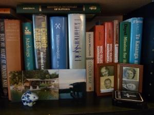 Bookshelves 003